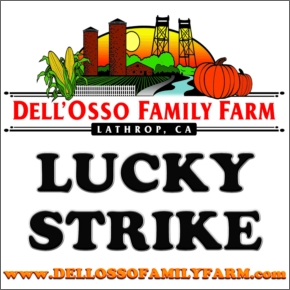 LUCKYSTRIKEdellosso [Sandy Creek Label Player]